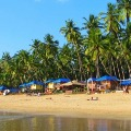 Dont Come To Goa To Enjoy Says Chief Minister Pramod Sawant