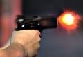 Two criminals dead in Delhi encounter